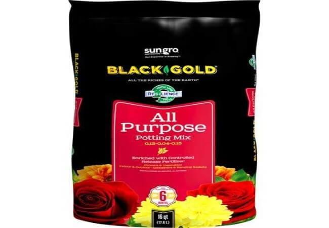 Black Gold 1310102 16-Quart All Purpose Potting Soil