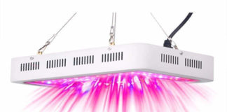 RECORDCENT Dual-1000 LED Full Spectrum Indoor Grow Medicinal Veg&Flower in Greenhouse Tent Plant