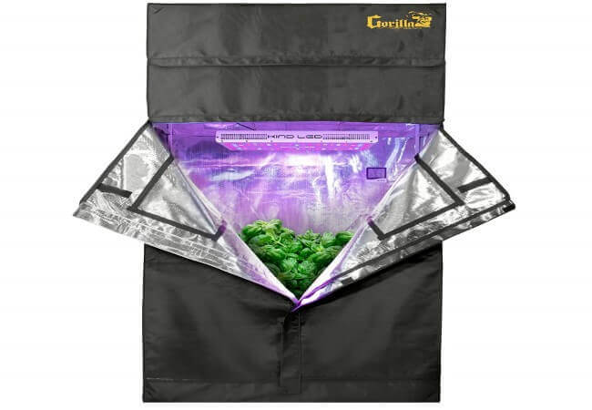 RecRoom Pro Indoor Grow Tent Kit 2'x4' Gorilla Grow Tent, Kind LED L600 Grow Light, Lotus Hydroponic Nutrients, Phresh Carbon Filter, Hurricane 4 Inline.