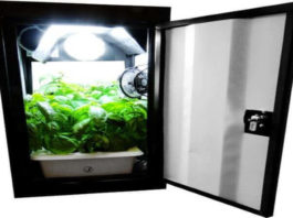 Supercloset Superbox Fully Automated Turnkey Grow Box