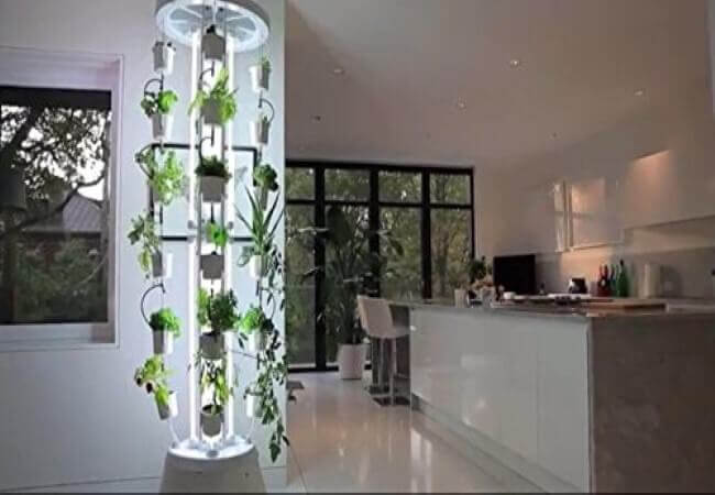 Best Hydroponic Vertical Farming Systems Grow Lights Buddy